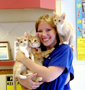 Veterinary Assistant with kittens